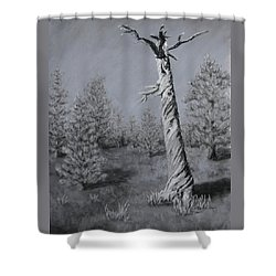 Shower Curtain featuring the painting Twisted by Nancy Jolley