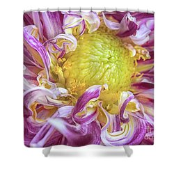 Twisted Petals Shower Curtain by Kim Andelkovic