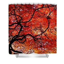 Twisted Red Shower Curtain by Colleen Kammerer