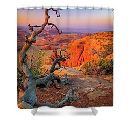 Twisted Remnant Shower Curtain