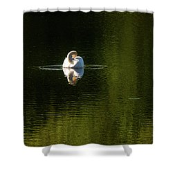 Shower Curtain featuring the photograph Twisted Swan by Onyonet  Photo Studios