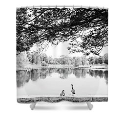 Shower Curtain featuring the photograph Two At The Pond by Karol Livote