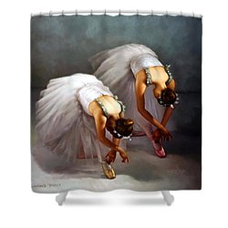 Two Ballerinas Shower Curtain