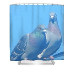 Two Birds In Spring Shower Curtain
