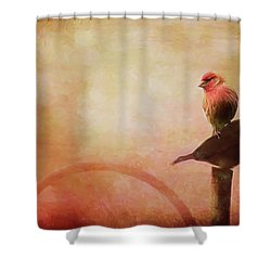Two Birds In The Mist Shower Curtain by Bellesouth Studio