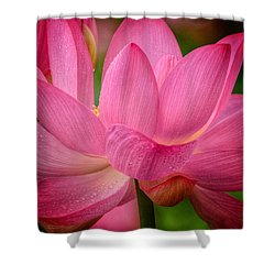 Two Blooms Shower Curtain