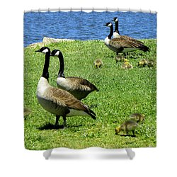 Shower Curtain featuring the photograph Two By Two  by Sandi OReilly