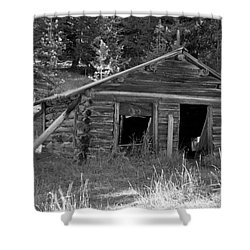 Two Cabins One Outhouse Shower Curtain by Richard Rizzo
