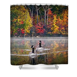 Two Canadian Geese Swimming In Autumn Shower Curtain