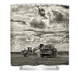 Two Cats Shower Curtain by Patrick M Lynch