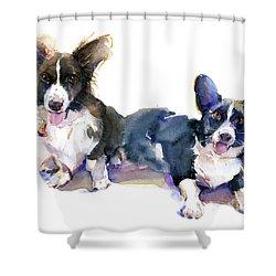 Two Corgis Shower Curtain