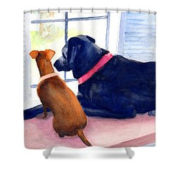 Two Dogs Looking Out A Window Shower Curtain