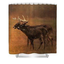 Two For One Shower Curtain by Geraldine DeBoer