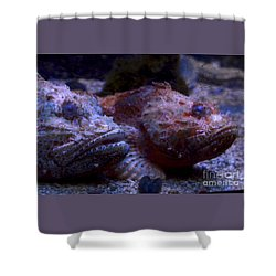 Shower Curtain featuring the digital art Old Friends by Leo Symon