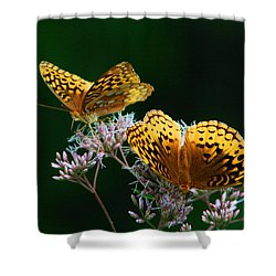 Two Fritillaries Shower Curtain by Kathryn Meyer