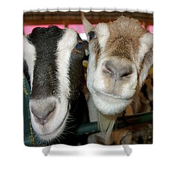 Two Goats Shower Curtain