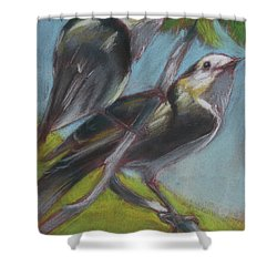 Two Gray Jays Shower Curtain
