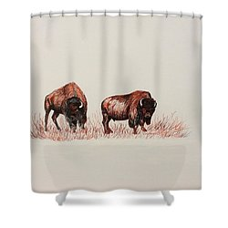 Two Grumpy Bisons  Shower Curtain