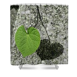 Shower Curtain featuring the photograph Two Hearts Entwined by Bruce Carpenter