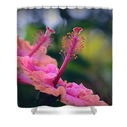 Two Hibiscus Shower Curtain