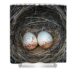 Shower Curtain featuring the photograph Two Junco Eggs In The Nest by William Lee