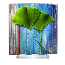 Two Leaves Of Ginkgo Biloba Shower Curtain