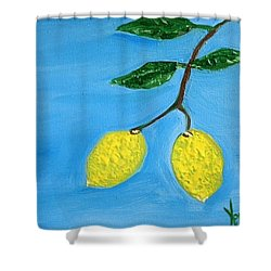 Two Lemons For Karen Shower Curtain