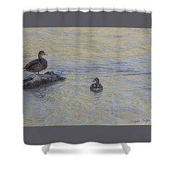 Two Mallard Ducks Shower Curtain