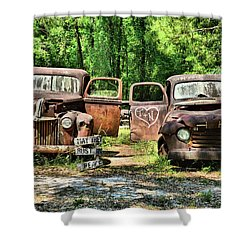 Two Old Dogs Shower Curtain