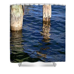Two Old Pilings 2 Shower Curtain