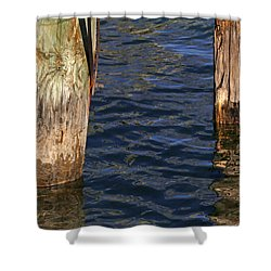 Two Old Pilings 3 Shower Curtain