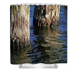 Two Old Pilings 4 Shower Curtain