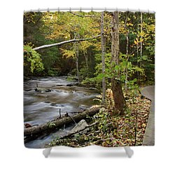Two Paths Shower Curtain by Karol Livote