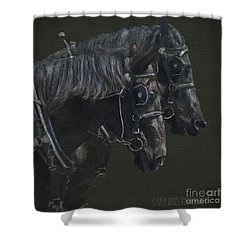 Two Percherons Shower Curtain