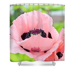 Two Pink Poppies Shower Curtain