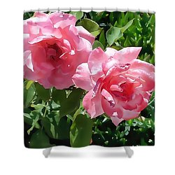 Two Pink Roses Version 1 Shower Curtain