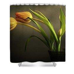 Two Plus Shower Curtain