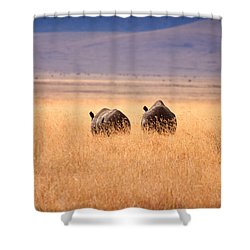 Two Rhino's Shower Curtain by Adam Romanowicz