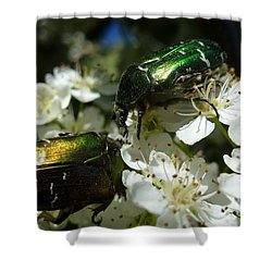 Shower Curtain featuring the photograph Two Scarabs Metallic Green by Jean Bernard Roussilhe