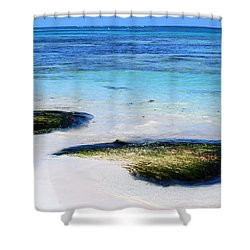 Two Seaweed Mounds On Punta Cana Resort Beach Shower Curtain by Heather Kirk