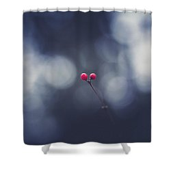 Shower Curtain featuring the photograph two by Shane Holsclaw