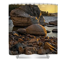 Two Small Trees Shower Curtain