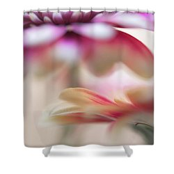 Shower Curtain featuring the photograph Two Souls 1. Macro Gerbera by Jenny Rainbow
