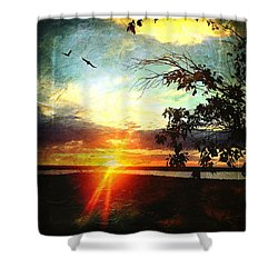 Two Souls Flying Off Into The Sunset  Shower Curtain