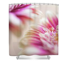 Shower Curtain featuring the photograph Two Souls. Macro Gerbera by Jenny Rainbow