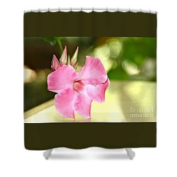 Shower Curtain featuring the photograph Two Step by Cathy Dee Janes