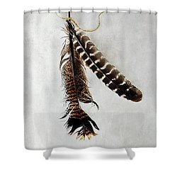 Shower Curtain featuring the photograph Two Tattered Turkey Feathers by Stephanie Frey
