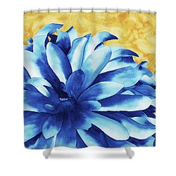 Two Tone Shower Curtain by Ken Powers