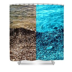 Two Tone Marine Shower Curtain
