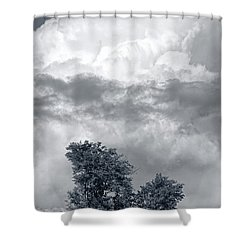 Two Trees #9249 Shower Curtain by Andrey Godyaykin
